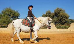 טיולי סוסים בחוות גן עדן