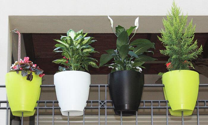 3 זוג עציצי Greenbo מעוצבים - משלוח חינם!