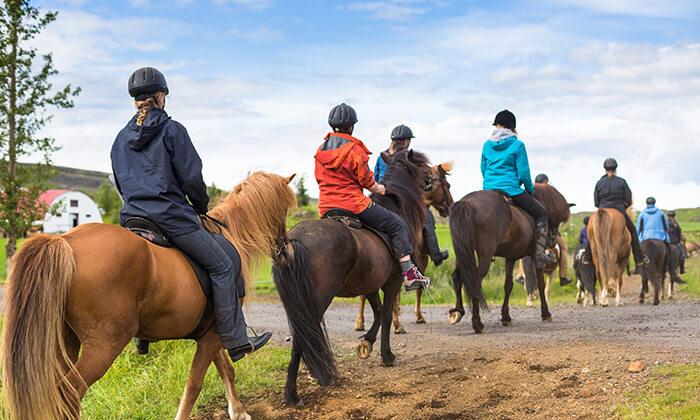 6 חוות מדבר יהודה - רכיבה על סוסים