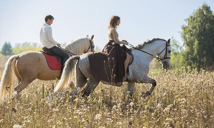 7 חוות מדבר יהודה - רכיבה על סוסים