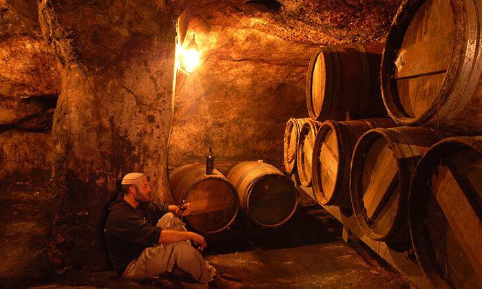 3 סיור טעימות גבינות ויין ביקב בוטיק פסגות, מרכז המבקרים נחלת בנימין