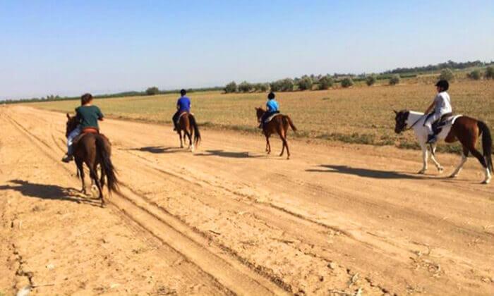 3 טיול רכיבה על סוסים בחוות הבוקר