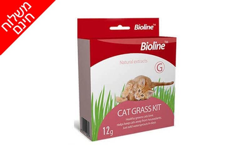 ערכה לגידול דשא מאכל לחתול