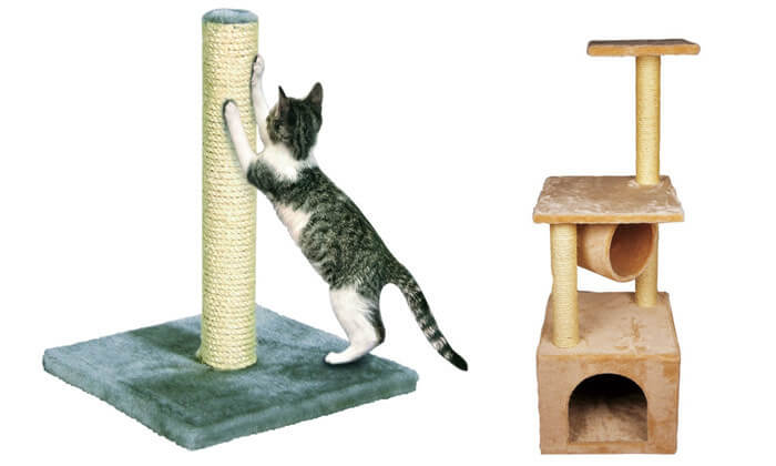 3 עמוד גירוד לחתול