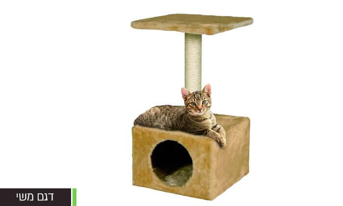 5 עמוד גירוד לחתול