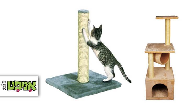 2 עמוד גירוד לחתול