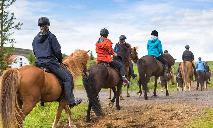 2 טיול רכיבה על סוסים עם חלום עולמי