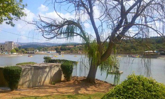 5 סגוויי באגם מונפורט