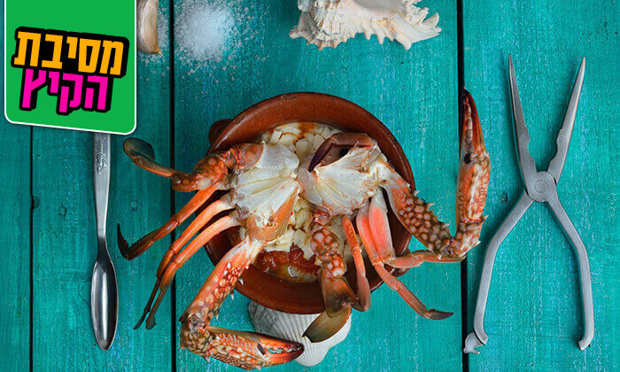 3 ארוחת דגים במסעדת פלמידה, רמת גן