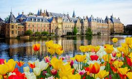 חופשת אוגוסט משפחתית בהולנד