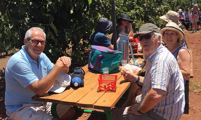 4 דיל חגיגת קיץ: קטיף דובדבנים ופירות יער בבוסתן של מוטי, עמק הבכא מול קיבוץ אלרום