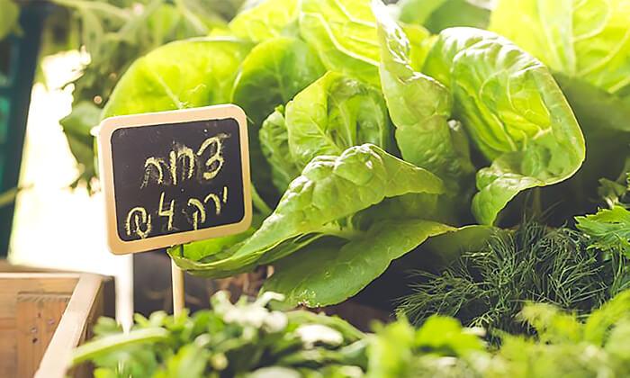 7 כניסה למשק הלברכט - גינת אוכל, ביתן אהרון