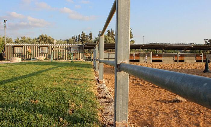 9 חוות צהלה - רכיבה על סוסים