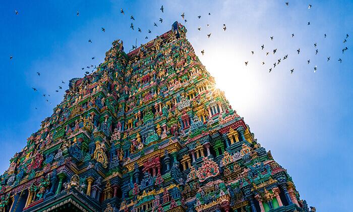3 טיול מאורגן בהודו - 8 ימים של ארמונות, מקדשים ורכיבה על פילים