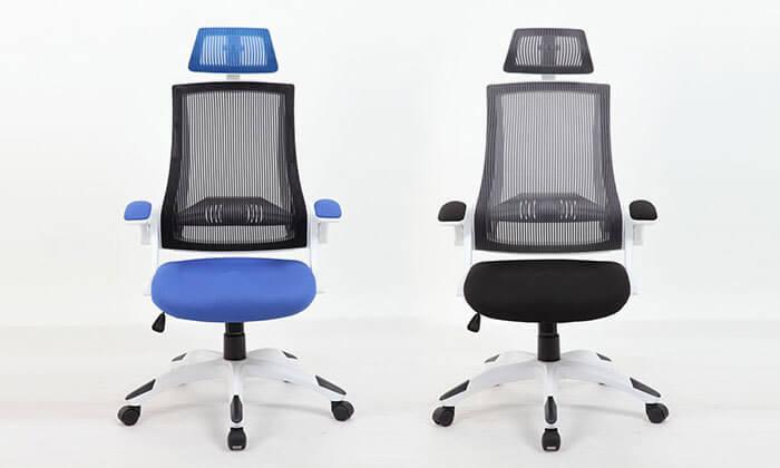 2 כסא מנהלים אורטופדי עם גב רשת