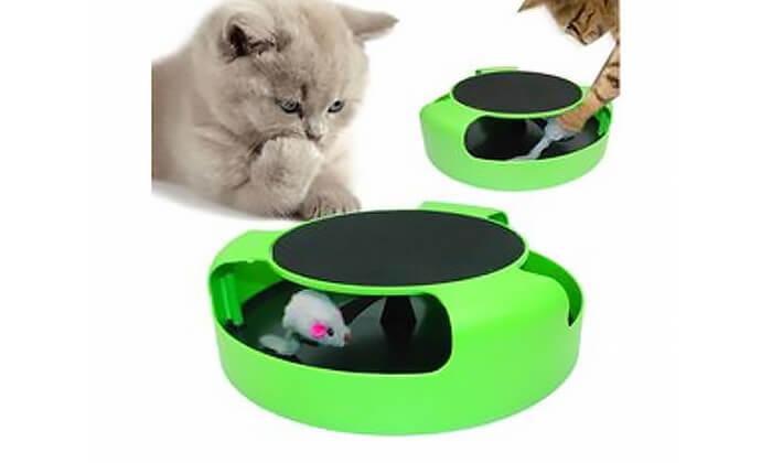 2 צעצוע עם משטח גירוד לחתולים