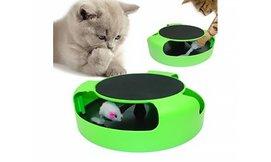 צעצוע עם משטח גירוד לחתולים