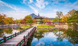 חדש! חופשה בדרום קוריאה