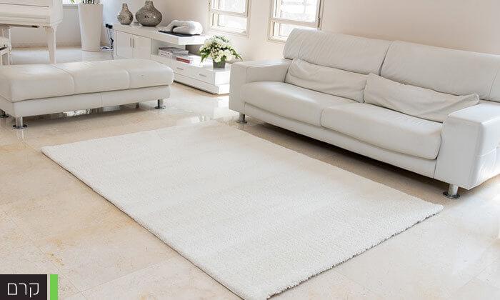 4 שטיחמיקרו שאגי לסלון