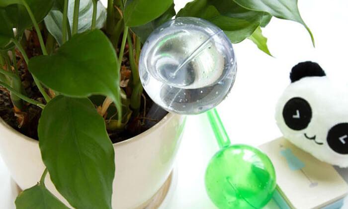 3 סט 4 בועות השקיה אוטומטיות לעציצים