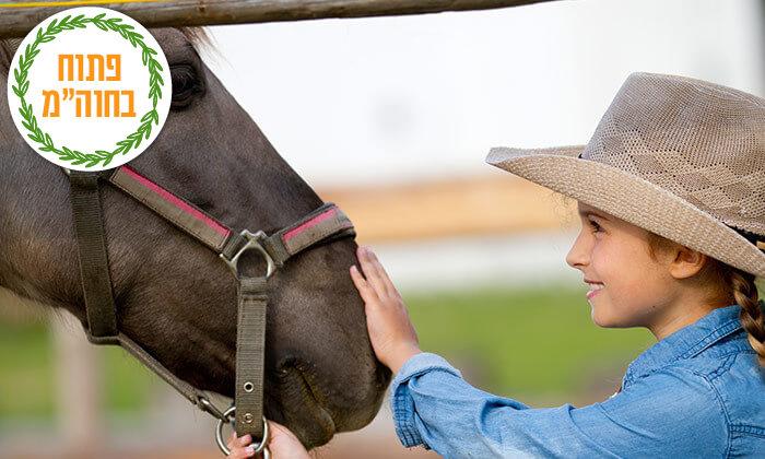 2 שיעורי רכיבה על סוסים בחווה של שון, גני יוחנן
