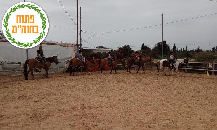4 שיעורי רכיבה על סוסים בחווה של שון, גני יוחנן