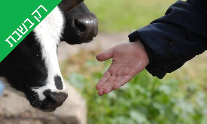 """5 כניסה לחווה החקלאית """"לגעת בטבע"""" בכפר הירוק"""