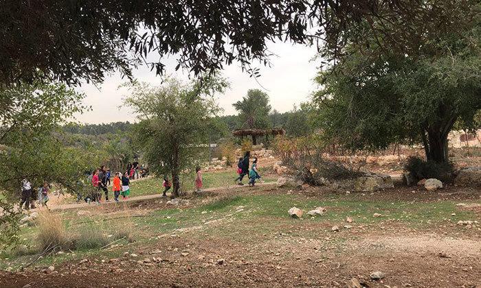 12 פארק נאות קדומים - כניסה והשתתפות בפעילויות לסוכות