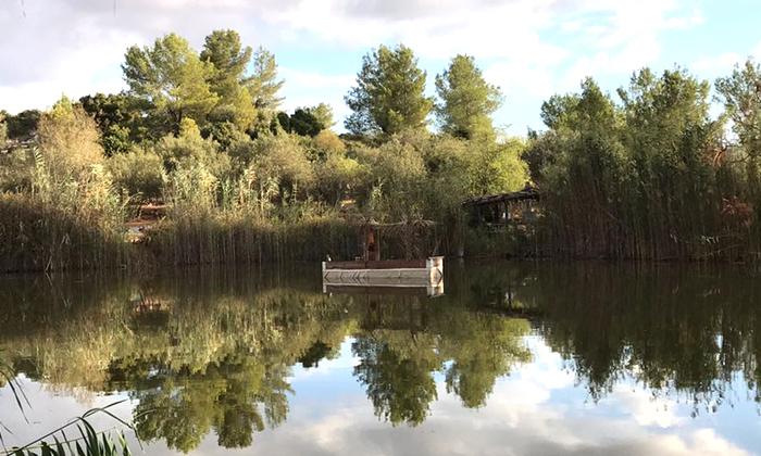 14 פארק נאות קדומים - כניסה והשתתפות בפעילויות לסוכות