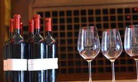 סיור ביקב כרמא וטעימות יין
