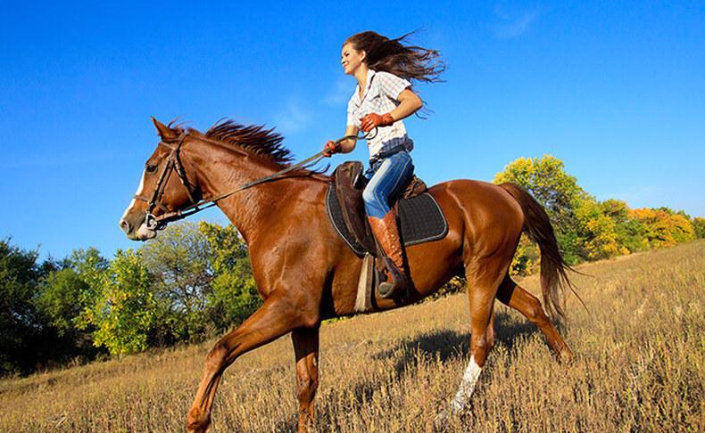 רכיבה על סוסים מול נופי הכרמל