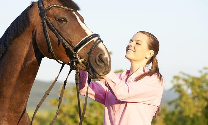 4 טיול רכיבה על סוסים - חווית הרוכבים