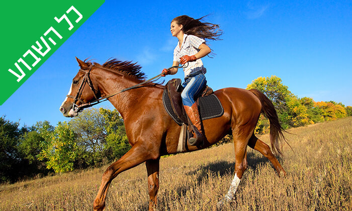 2 טיול רכיבה על סוסים - חווית הרוכבים