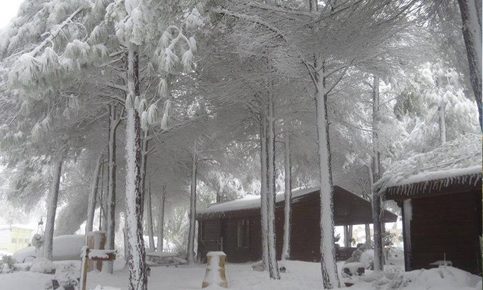 13 חופשה ברמת הגולן - שלג, יין ונופים