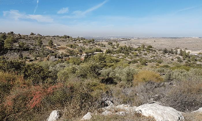 13 פארק נאות קדומים - כניסה והשתתפות בפעילויות לחנוכה 2018