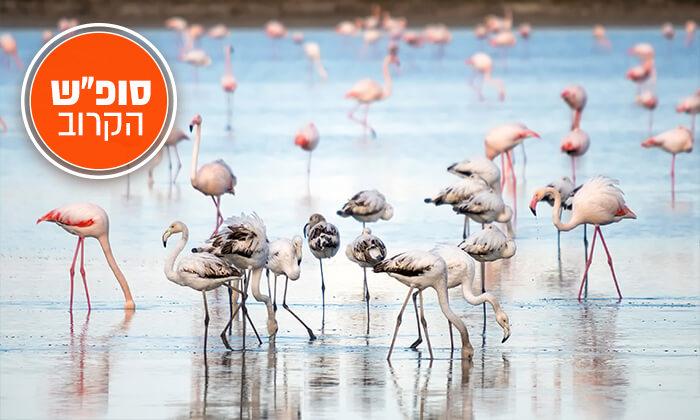 """9 חורף חם בקפריסין: מלון 5 כוכבים, כולל סופ""""ש הקרוב"""