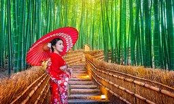 טיול מאורגן ליפן - 10 ימים