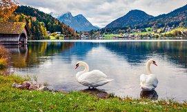טוס וסע לאוסטריה בקיץ