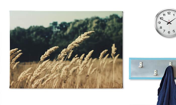 6 הדפסת תמונה על קנבס, אתר ZOOMA החדש