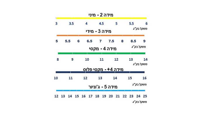 6 מארז חמש חבילות חיתוליפרימיום Yoppies כולל שלושה סינרים של דיסני