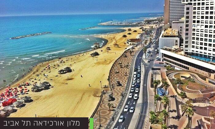 6 יום כיף זוגי עם עיסויים ברשתShare Spa- לאונרדו ארט, אורכידאה תל אביב, לאונרדו סוויט בת ים
