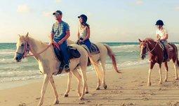 טיול רכיבה זוגי על סוסים
