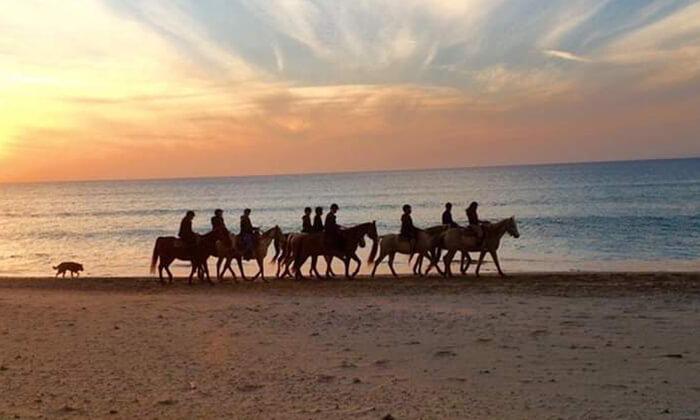 5 טיול רכיבה זוגי - חוות הסוסים ביתן אהרון, חוף דור