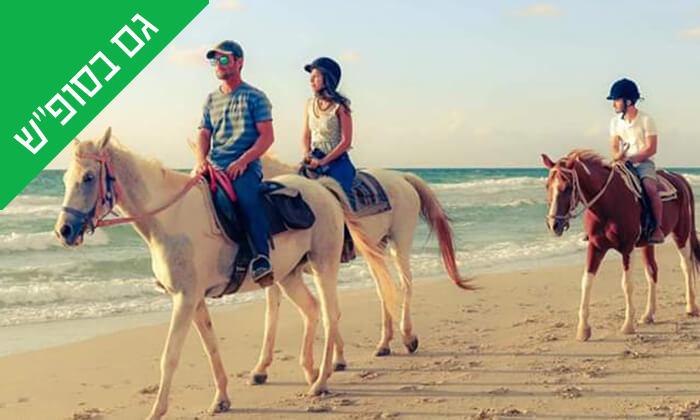 2 טיול רכיבה זוגי - חוות הסוסים ביתן אהרון, חוף דור