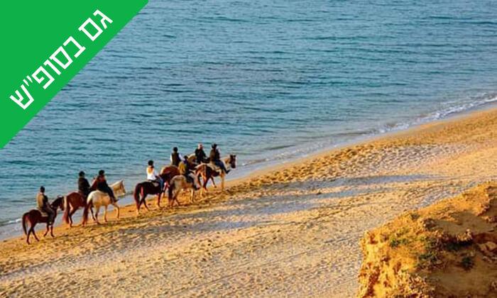 4 טיול רכיבה זוגי - חוות הסוסים ביתן אהרון, חוף דור