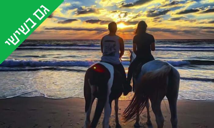 3 טיול רכיבה על סוסים לאורך חוף דור