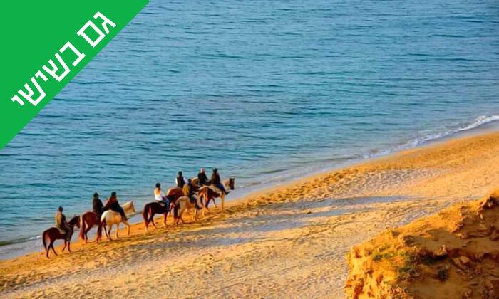 4 טיול רכיבה על סוסים לאורך חוף דור