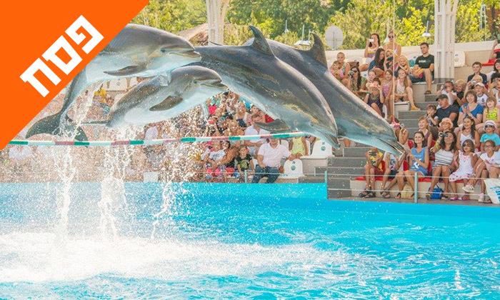 2 חופשת פסח משפחתית באודסה, כולל מופע דולפינים, פארק חבלים וגן חיות