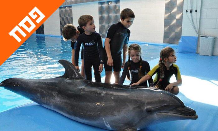 11 חופשת פסח משפחתית באודסה, כולל מופע דולפינים, פארק חבלים וגן חיות