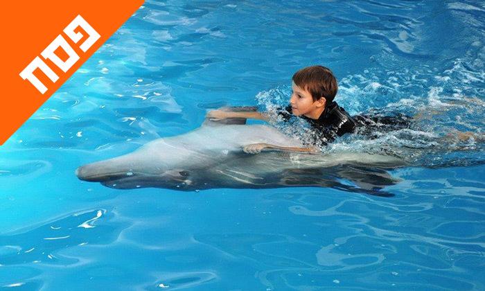 12 חופשת פסח משפחתית באודסה, כולל מופע דולפינים, פארק חבלים וגן חיות